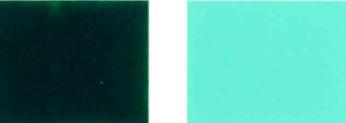 الصباغ والأخضر و36 لون